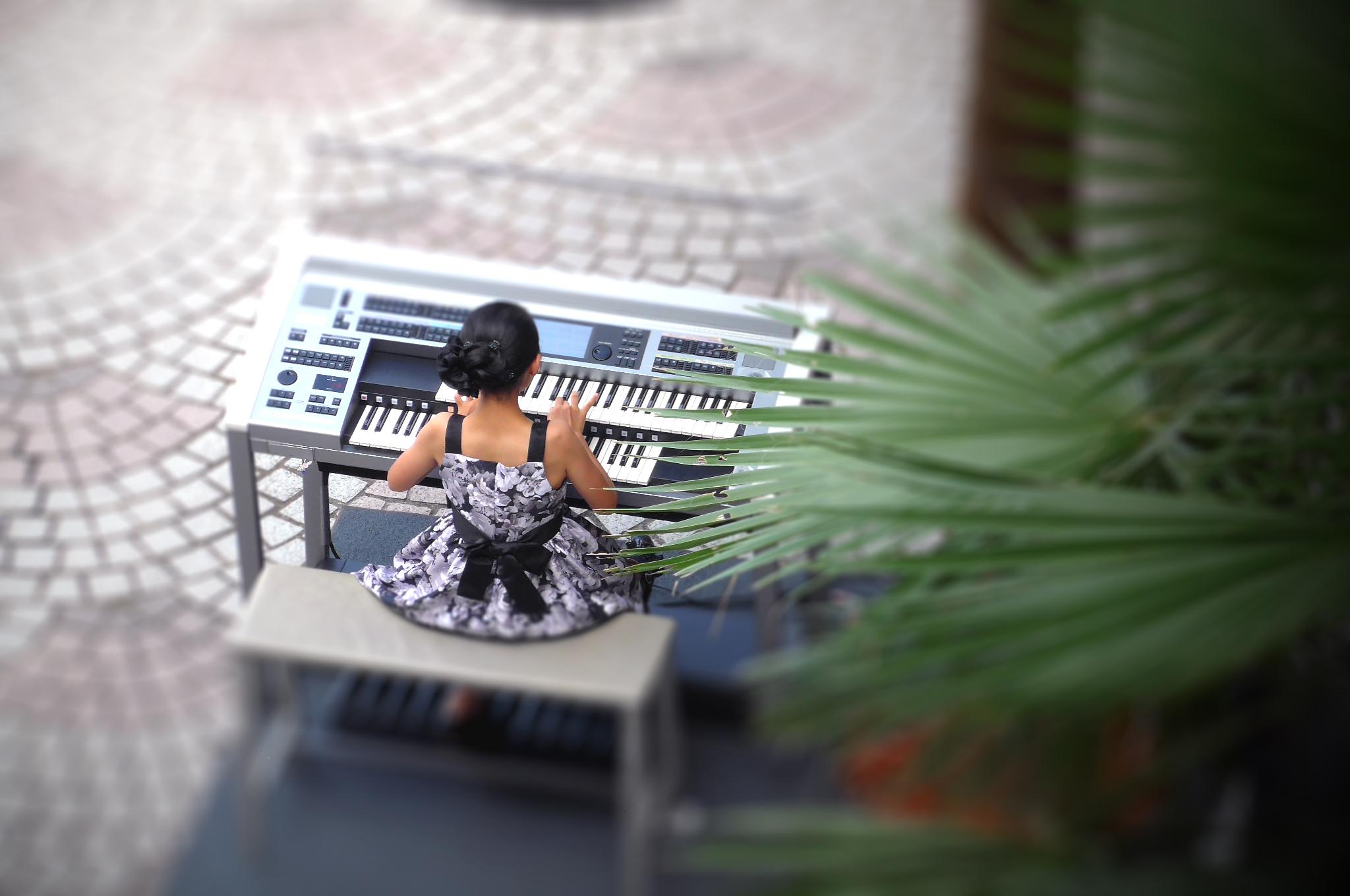 夏空に響く音楽