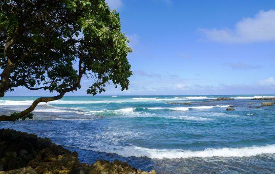 風と虹と砂浜と