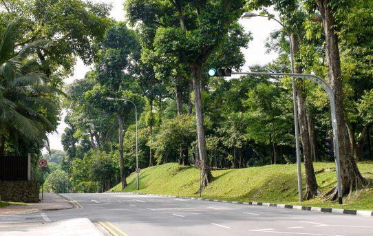 シンガポールの街角で
