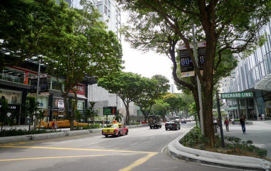 specialities of singapore